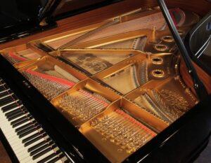 derner ivica klavir štimer štimanje radiona instrumenti majstor popravak